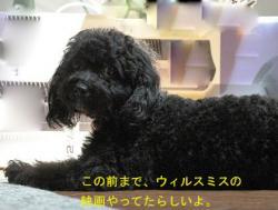 ブログ用80ー2 copy