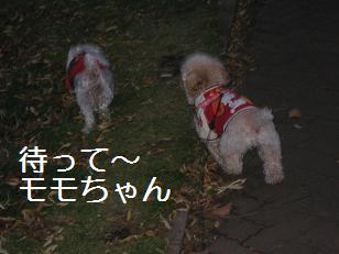 2009_1031_161516-IMG_7505.jpg