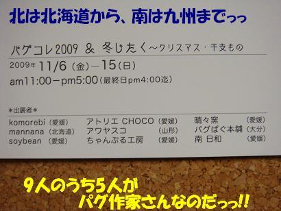 DSC03783.jpg