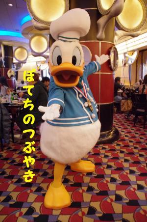 20120209 シェフドナドナちゃん