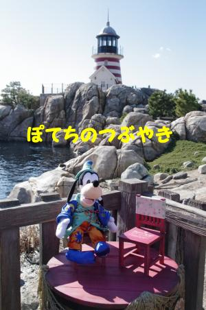 20120209 スウィートグーさん