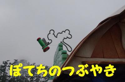 20120223 隠れグーさん1