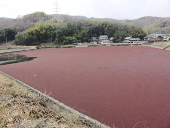 ④農業用ため池2