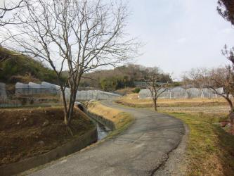 ⑭旧山陽道・上道(お寺)1