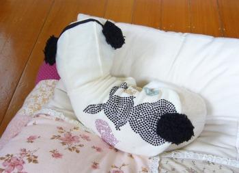 s-P1180948.jpg