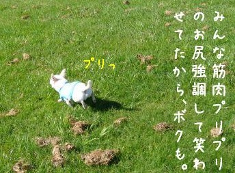 s-P1190878.jpg