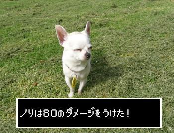 s-P1200082.jpg