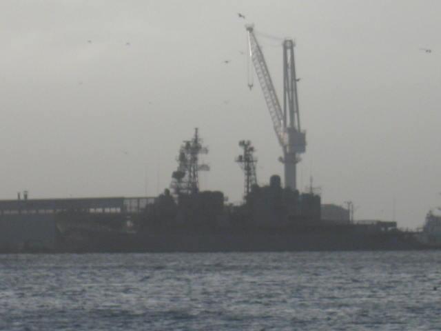 きり型シルエット 201109