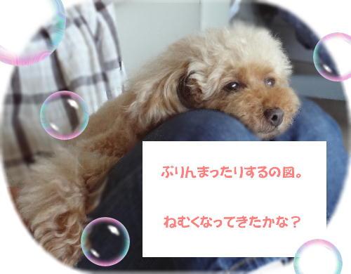 2nichi7.jpg