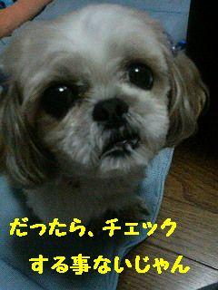 200710131821001.jpg