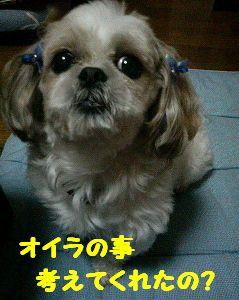 200711122346001.jpg