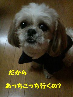 200712121924001.jpg