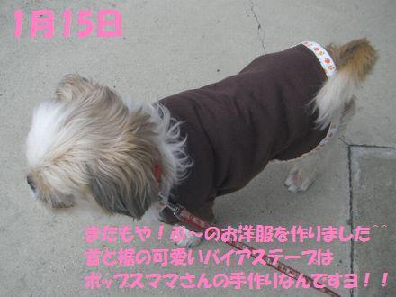IMGP0287_3_20120115235312.jpg