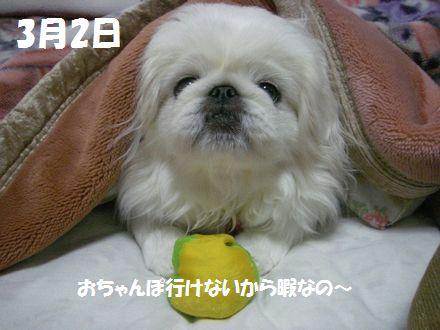 IMGP1281_5.jpg