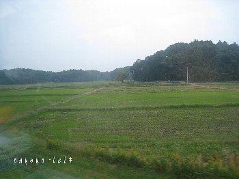 200910241.jpg