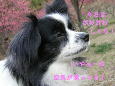 uwasa2.jpg