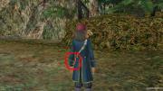 ドラゴンの杖っちゅーか、、、
