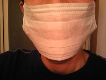 毎日用のマスク2