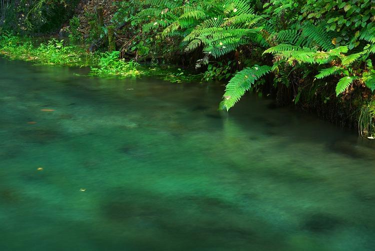 水と緑と ~軽井沢 白糸の滝 2~