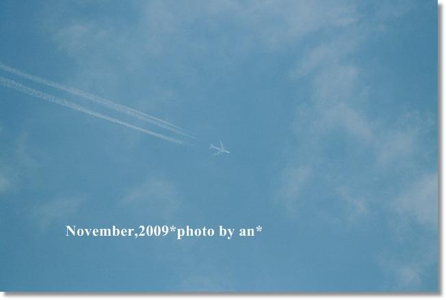 20091107_3353.jpg