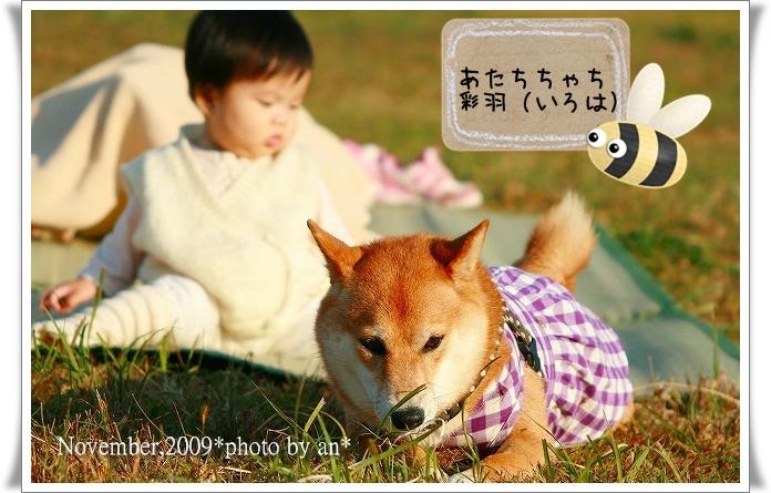 20091108_3513.jpg