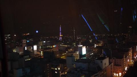 札幌 観覧車からの景色