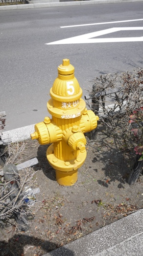 黄色い消火器