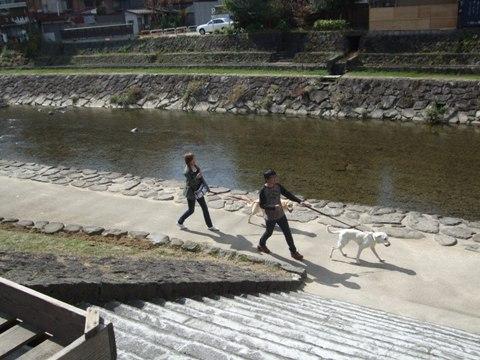 2009_10205gatu0097.jpg