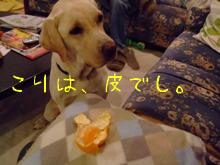 2009_11105gatu0021.jpg