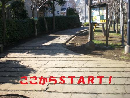 CIMG4136.jpg