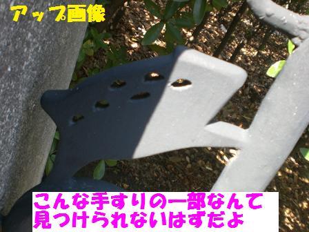 CIMG4185.jpg