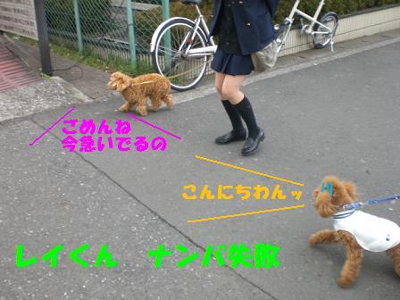CIMG4416.jpg