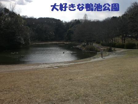 CIMG4476.jpg
