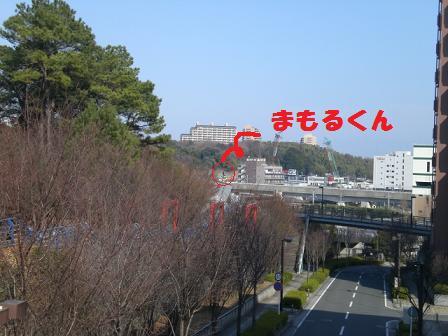 CIMG4636.jpg