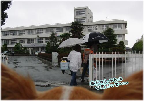 09-09 実家 1