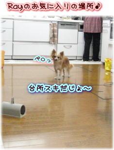 09-09 実家 5