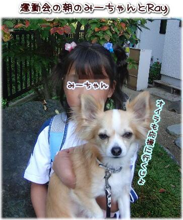 09-09 みーちゃんの運動会