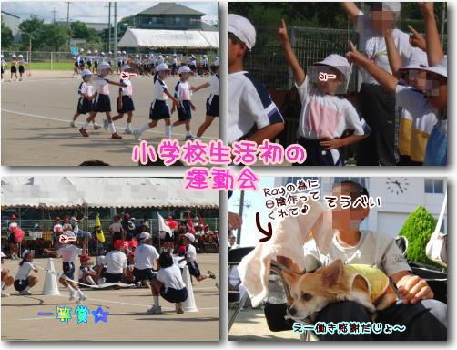 09-09 みーちゃんの運動会 2