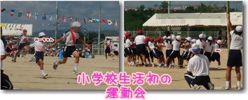 09-09 みーちゃんの運動会 4