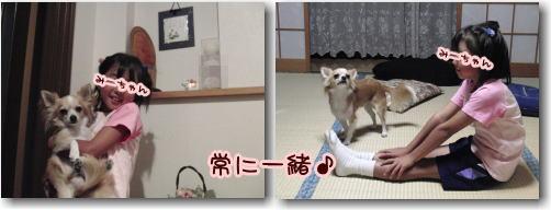 09-09 みーちゃんの運動会 7