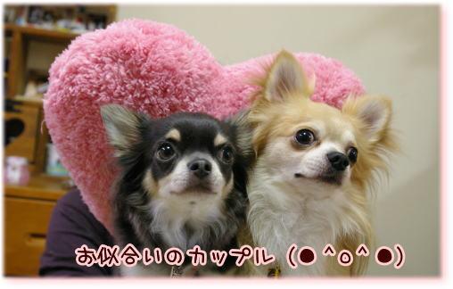 09-10 さっちゃんおめでとう? 2