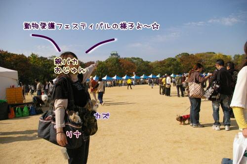 09-11 グラサン軍団 4