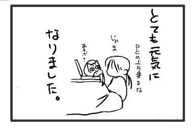 blog6-1.jpg