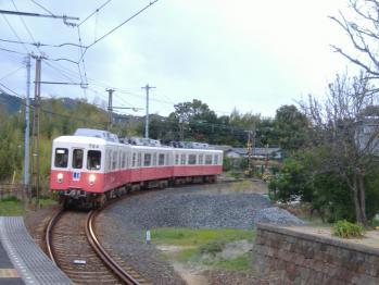 20111216kotodenumi1.jpg