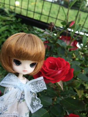 BLOG2011_05260016.jpg