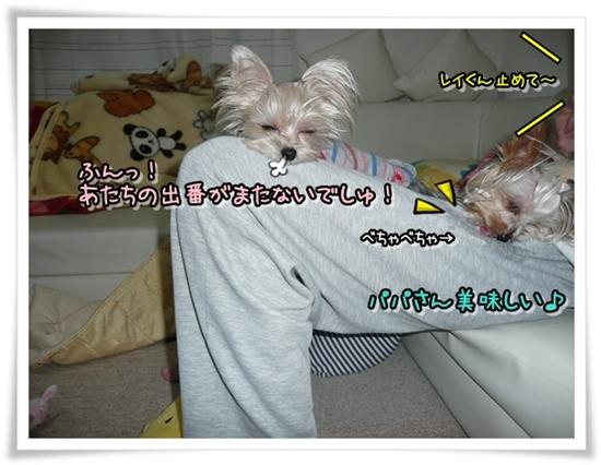 レイモコ (2)