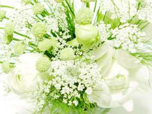 flower31-2_300x225.jpg