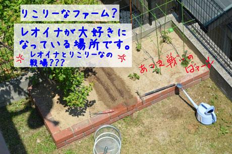 2_20110518145854.jpg