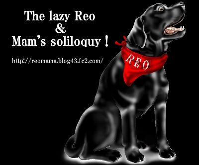 REO2-3.jpg