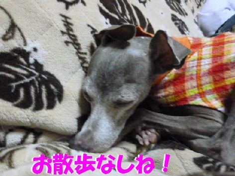 b_20111022100858.jpg